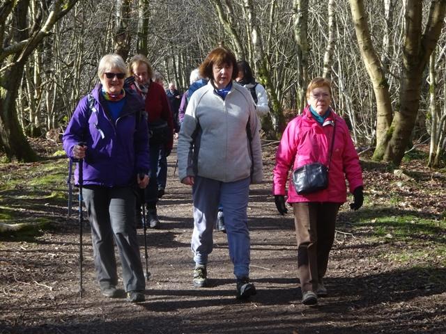 Foggieton Walk 1