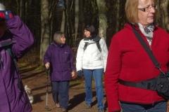 Foggieton Walk 2